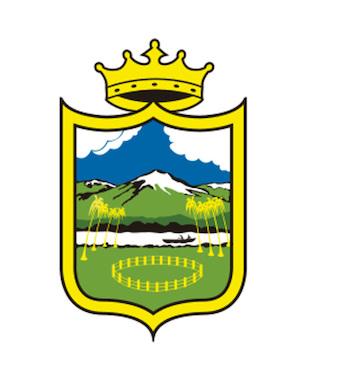 Alcaldia de Neiva